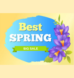 Best spring big sale advertisement label crocus vector