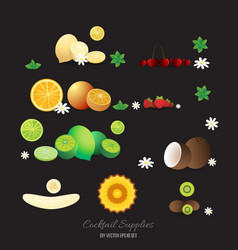 cocktails decorations fruits set vector image