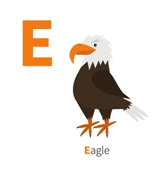 Letter E Eagle Big beak Beautiful Exotic bird icon vector image
