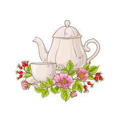 Wild rose tea on white background vector