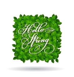Hello Spring greeting in squar shape vector image