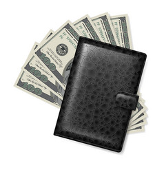 Leather wallet with dollars on white vector