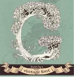 magic grunge forest hand drawn by vintage font - G vector image vector image
