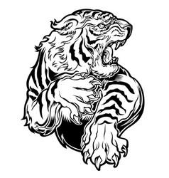 Animals angry tiger drawing vector