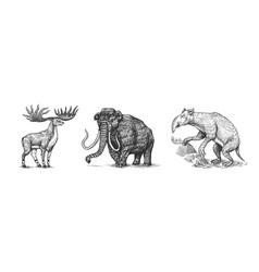 mammoth or extinct elephant irish elk or ground vector image