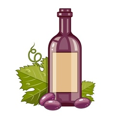Red wine bottle with grapes vector image vector image