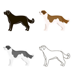 St bernard dog icon in cartoon style for vector