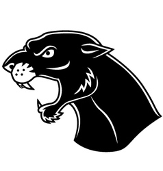 black panther head vector image