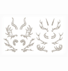 collection of horns of various animals isolated on vector image