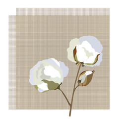 Cotton fabric icon with cotton flower nature vector