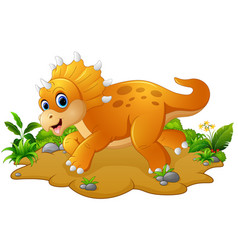 cute and young cartoon triceratops vector image