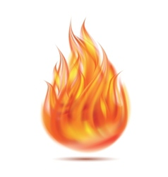 Symbol of fire vector image