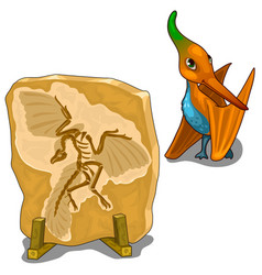 cute pterosaur and its imprint on the stone vector image