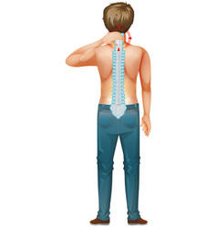 Back man with spinal core injury vector