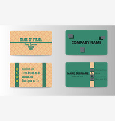 business and visit card vector image