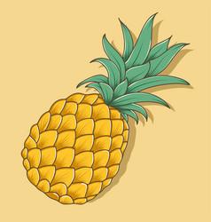 fresh pineapple vector image