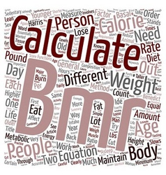 How To Calculate BMR text background wordcloud vector image