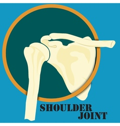 Human shoulder joint vector image