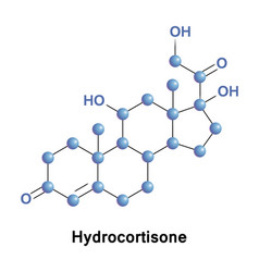 Hydrocortisone hormone medication vector