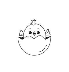 outline of chicken baby inside egg vector image