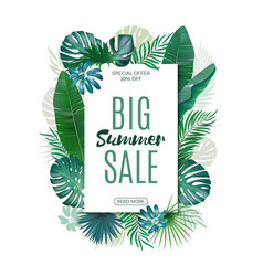 Sale banner poster with exotic leaves jungle vector