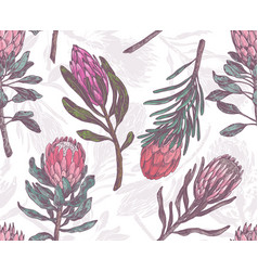seamless pattern with sketch drawing protea vector image