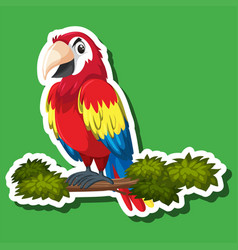 cute parrot sticker character vector image
