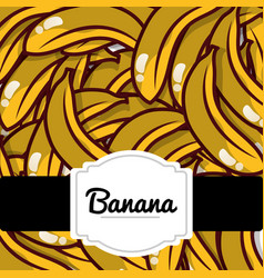 delicious banana fresh fruit label pattern vector image
