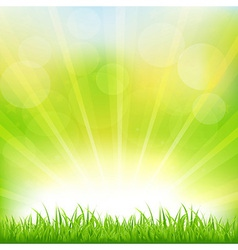 Green Background With Green Grass And Sunburst vector image
