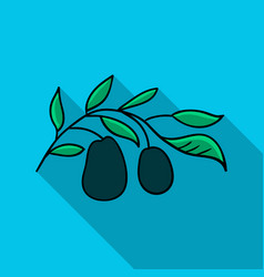Italian olives from italy icon in flat style vector