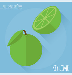 Lime icon template vector