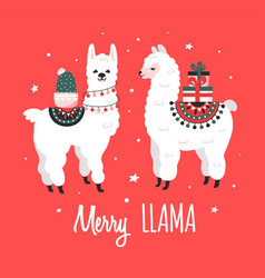 Merry christmas greeting card with cute lamas vector