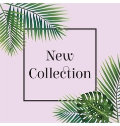 Palm leaf New collection poster Web banner or vector