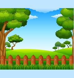 summer sunny meadow landscape vector image