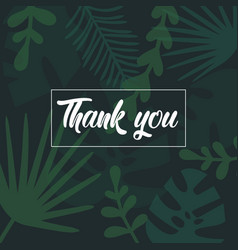 thank you lettering text on palm tropical leaves vector image