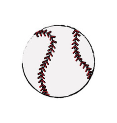 baseball ball sport competition element vector image vector image