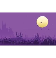 Full moon at Halloween bat vector image