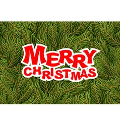 Merry Christmas pine branches Holiday greeting vector image