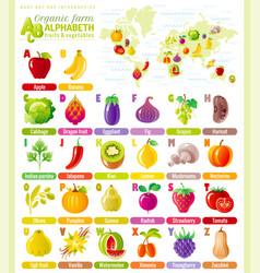Alphabet food infographics fruit vegetable vector
