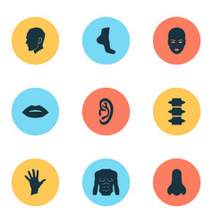 body icons set with foot chest head and other vector image