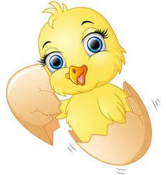 cracked egg with cute chicks inside vector image