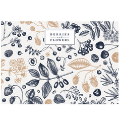 Hand drawn berries background in engraved style vector
