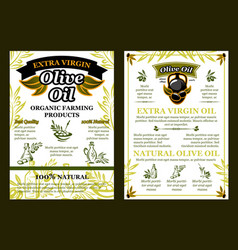 olives poster for organic olive oil vector image vector image