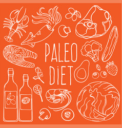 Paleo ingredients healthy food diet vector