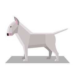 bull terrier in minimalist style vector image
