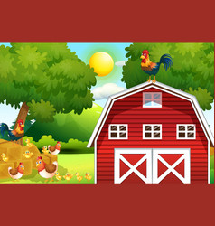 farm scene with chickens on the barn vector image
