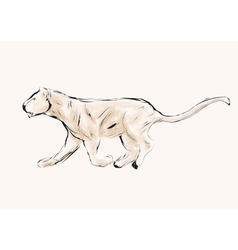 Lioness hunting vector