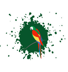 parrot logo idea design beautiful scarlet macaw vector image
