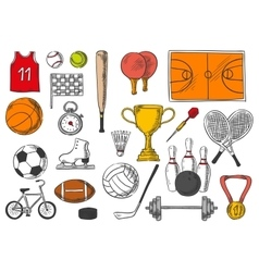 Sport items balls isolated sketch icons vector