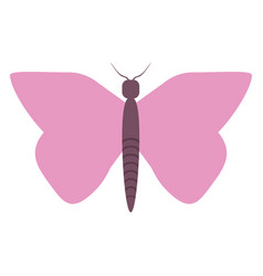 women day pink butterfly icon vector image vector image